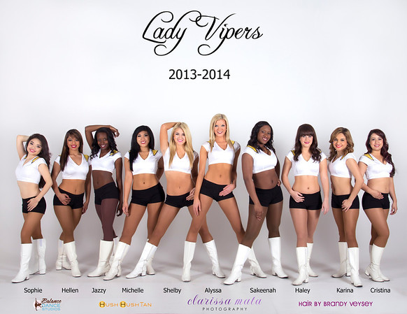 Lady Vipers 2014!