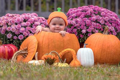 """""""Pumpkin Spice"""""""