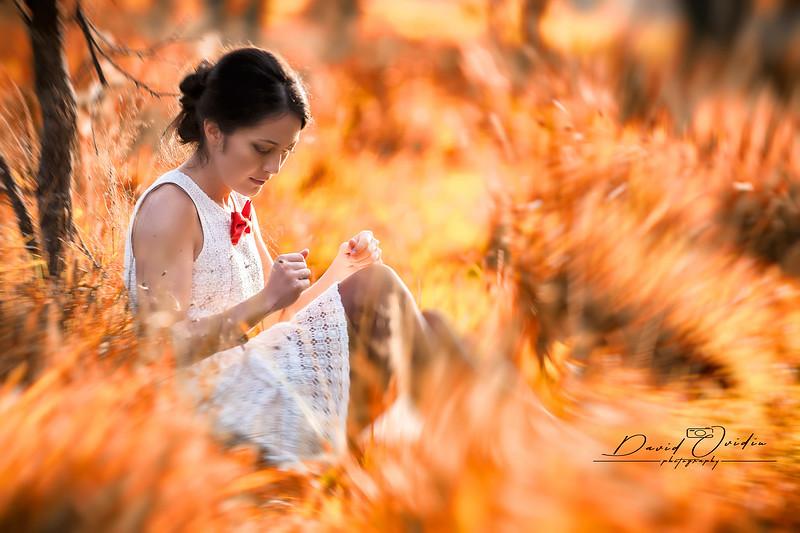 Fotografi Timisoara