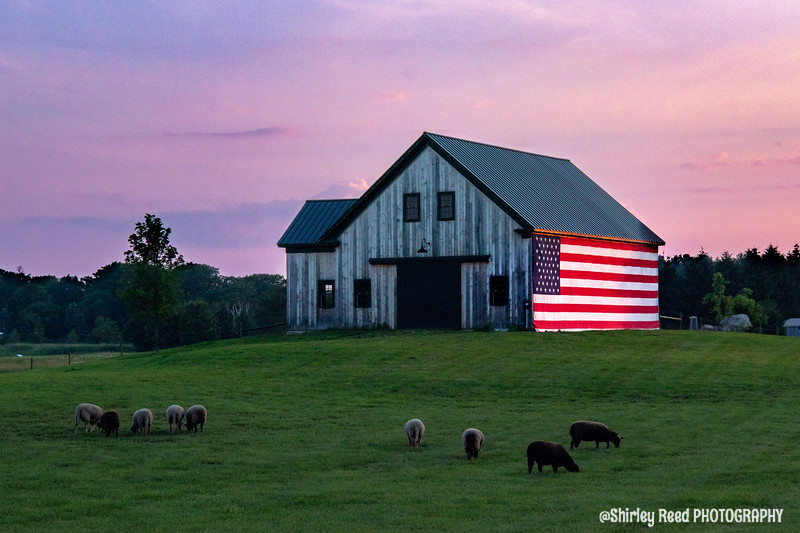 Flag barn in North Hampton