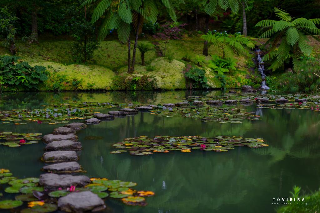 Parque Terra Nostra, S. Miguel, Açores