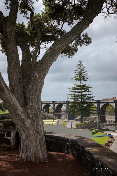 Jardim da Paraiso, Ribeira Grande, S. Miguel, Açores