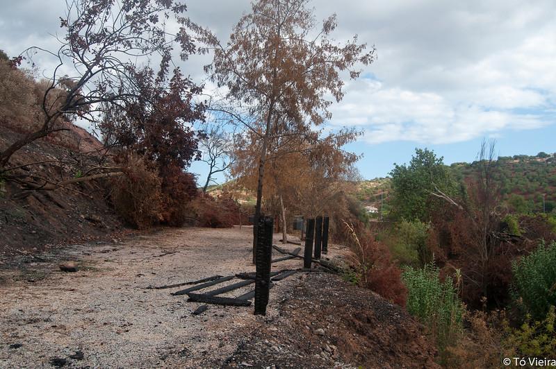 Pego do Inferno - Algarve - Set2012_9791