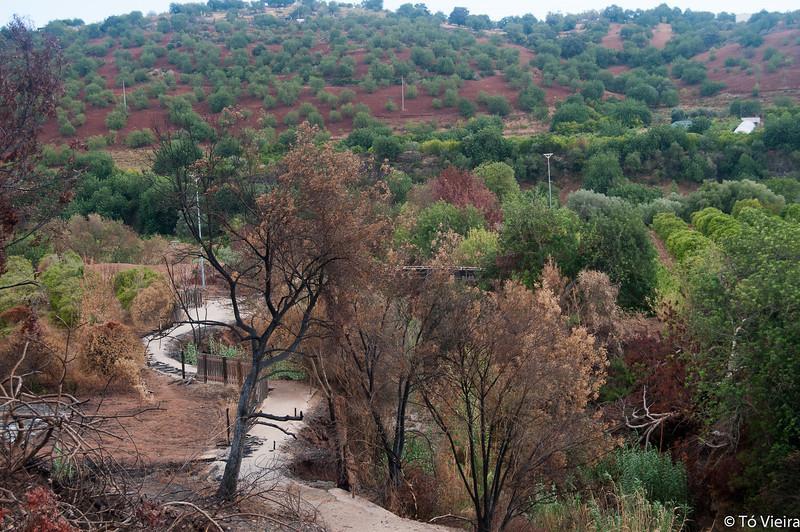 Pego do Inferno - Algarve - Set2012_9787
