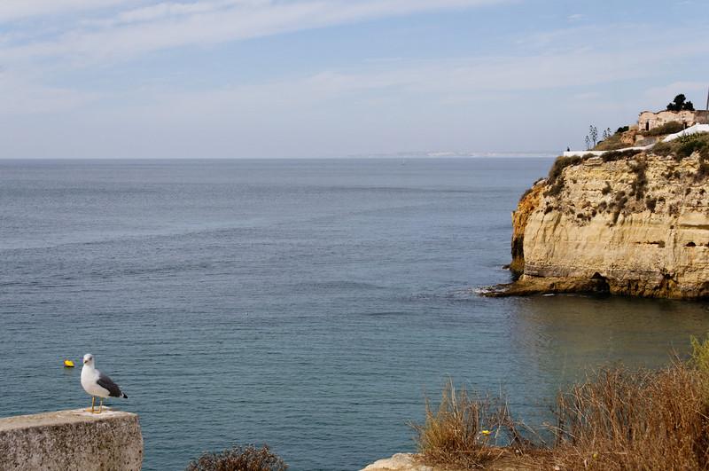 praia do carvoeiro - Lagoa - 8135