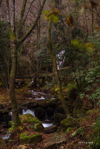 Cascata da Cabreia