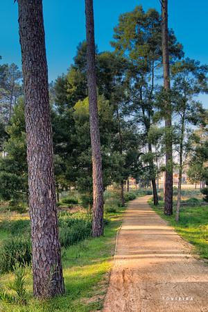 Parque do Buçaquinho - Esmoriz