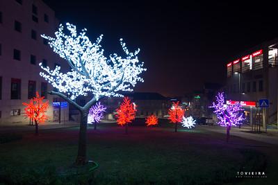 Agueda à noite pelo Natal