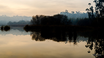 mamodeiro, lagoa