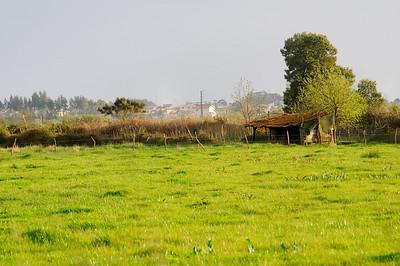 Baixo Vouga - Cacia - Aveiro - 20100324 - 6292_raw