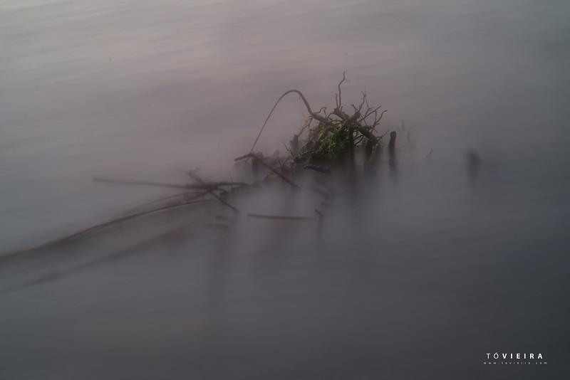 Ria de Aveiro