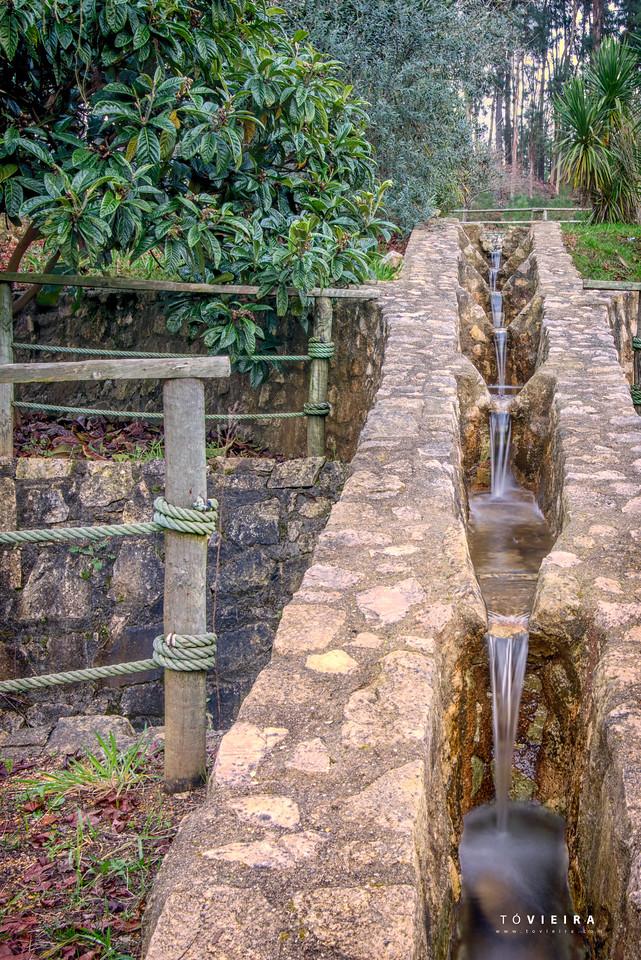 Parque das Cales<br /> Oiã, Oliveira do Bairro