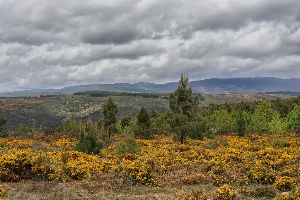 Varge, Bragança, parque de Montesinho