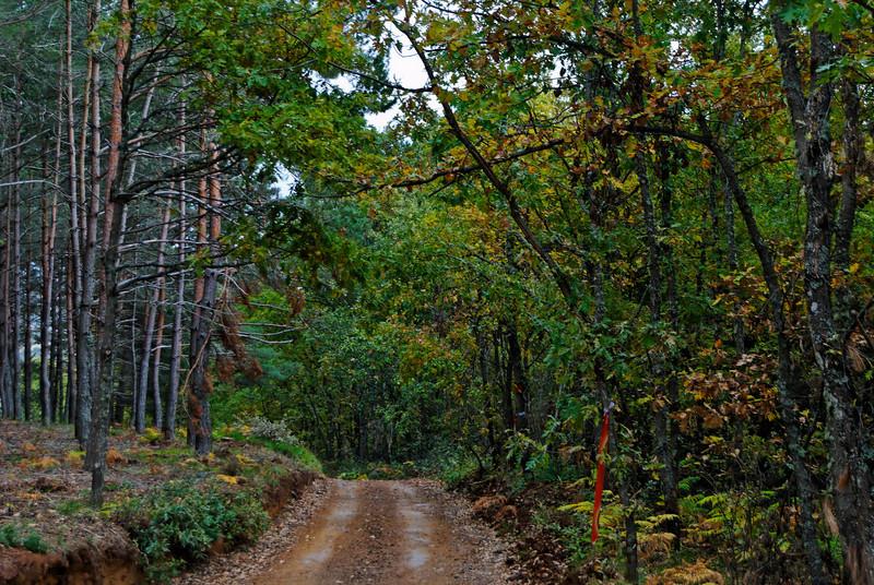 Vinhais - Bragança - a caminho do Parque Biológico