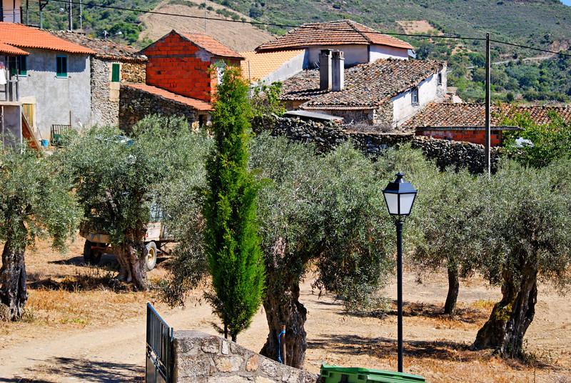Vilares da Vilariça-Alfandega da fé-20090501  -  9739