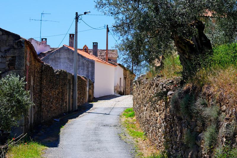 Vilares da Vilariça-Alfandega da fé-20090501  -  9645