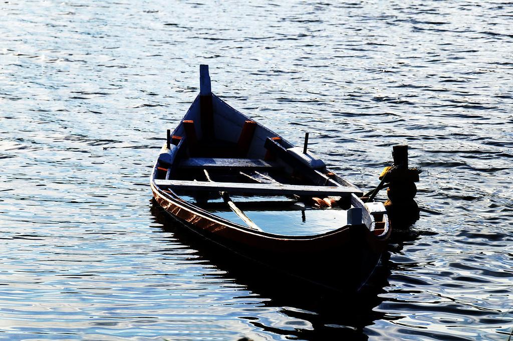 lagoa - Mira - 9239