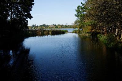 lagoa - Mira - 9214