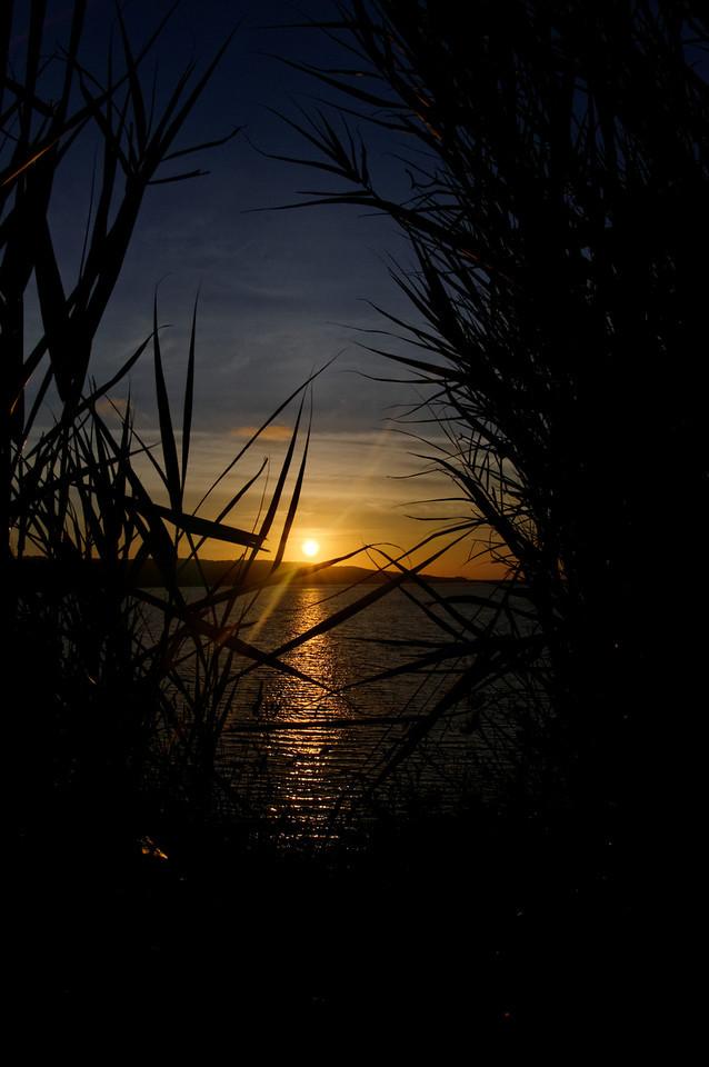 Por do Sol<br /> Pulga - Lagoa de Óbidos