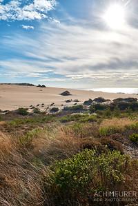 Dünen an der Westküste von Portugal in der Nähe von Lissabon