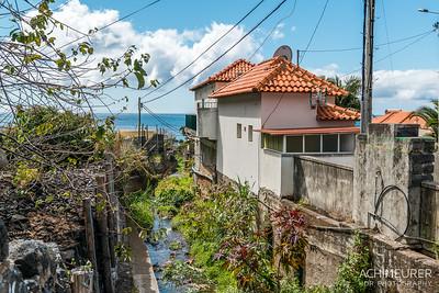 Madeira_6845