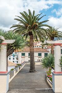 Madeira_6250