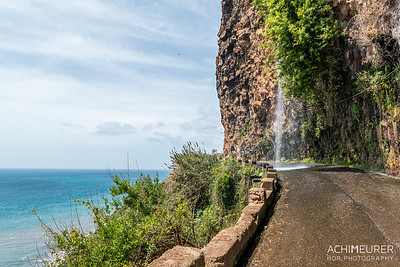 Madeira_6296