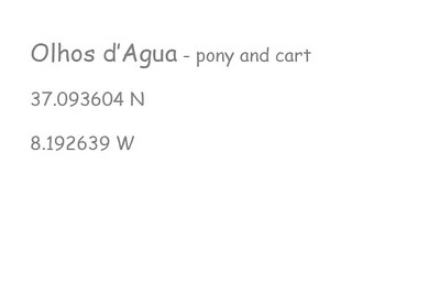 Olhos-d'-Agua-pony-and-cart