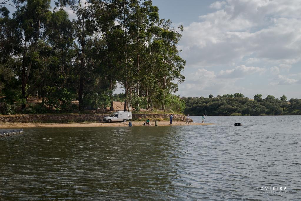 albufeira do Maranhão, Avis