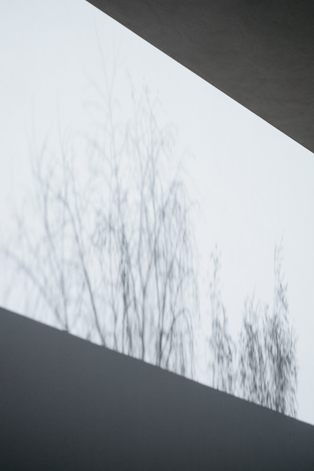 Shadows on the walls of the Fundaçao de Serralves