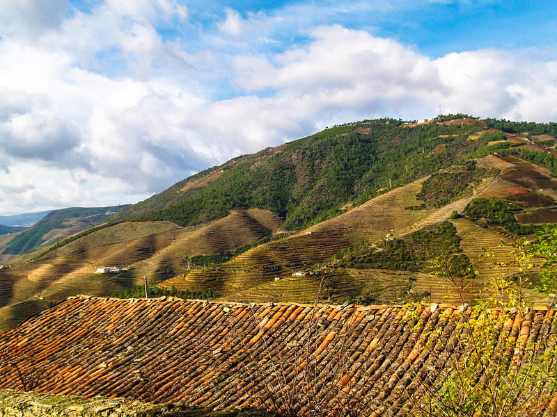 Douro Valley, the oldest wine region in the world