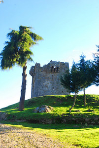 Torre Medieval de Paços de Vilharigues Torre medieval/moderna, de planta quadrangular. Encontra-se localizada num outeiro, a norte da aldeia de Vilharigues. Apenas restam duas das quatro paredes originais, sendo no entanto possível observar o negativo dos três pisos que possuía. À semelhança da maioria das construções castelares, a torre está implantada sobre um acentuada elevação, beneficiando de uma soberba vista sobre a vila de Vouzela e o vale de Lafões. A sua localização estratégica, juntamente com o seu perfil militar criou inúmeras dúvidas sobre a sua função, sendo confundida ainda hoje com um castelo ou com uma torre de menagem. Terá sido erguida em finais do século XIII, inícios do século XIV, dado que já apresenta nas paredes exteriores dois matacães assentes sobre mísulas.