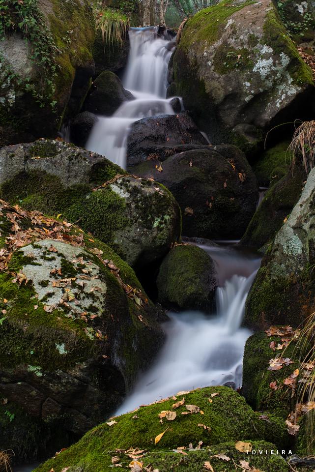 Nascente do Rio Alfusqueiro - Vouzela