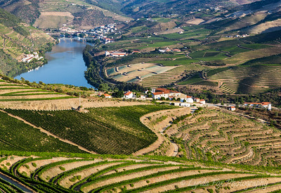 Wine Country in Portugal