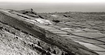 Landscape Line