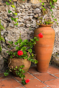Clay Pots with Geranium