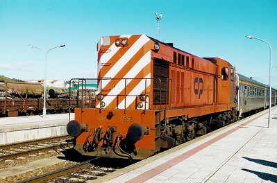 1559 at Fuentes de Onoro (Spain) on 29th January 2001