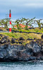 Açores-Pico-Madalena-Madalena Dir Lt