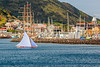 Açores-Faial-Horta harbor sailing