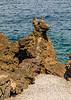 Açores-Pico-Lajido-Lava rock dog head