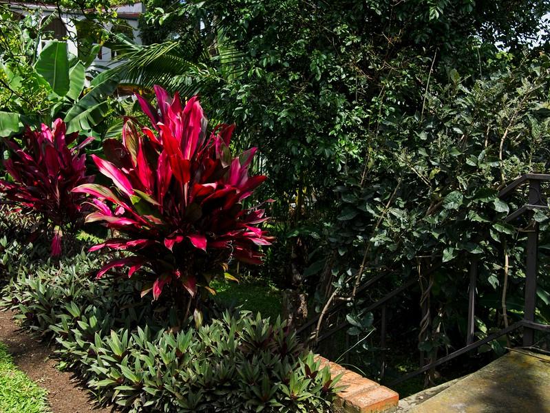Costa Rica BW_1080438