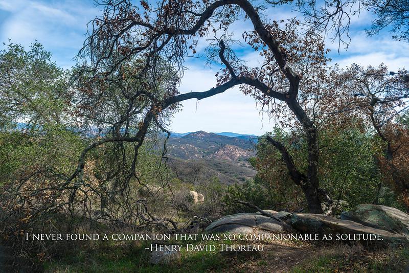 Thoreau quote - companionable as solitude