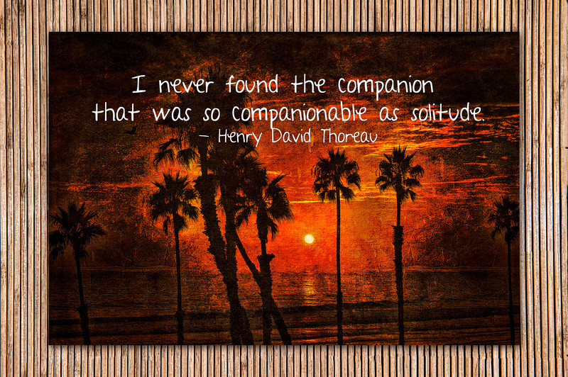 Companionable
