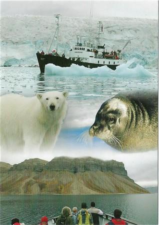 ms LANGOYSUND Nordenskjoldbreen og Skansbukta Svalbard 2019