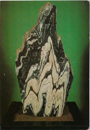 Folded Lewisian Gneiss Loch Duich Geological Museum London