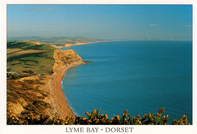 Lyme Bay Dorset from 2013