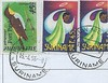 JARIKABA E&F Lines Fyffes from 1996 Suriname-003