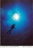 Diver Cayman Islands 1999 SA