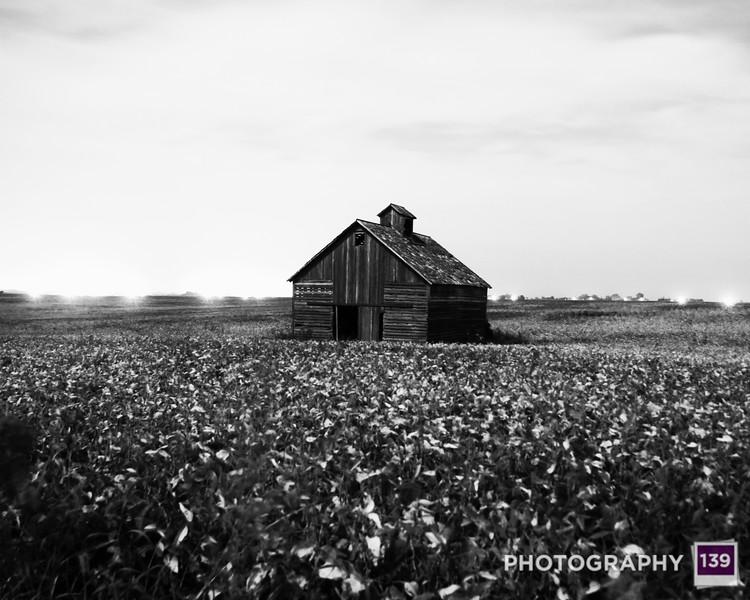 2014 Iowa State Fair Photography Salon - Shine