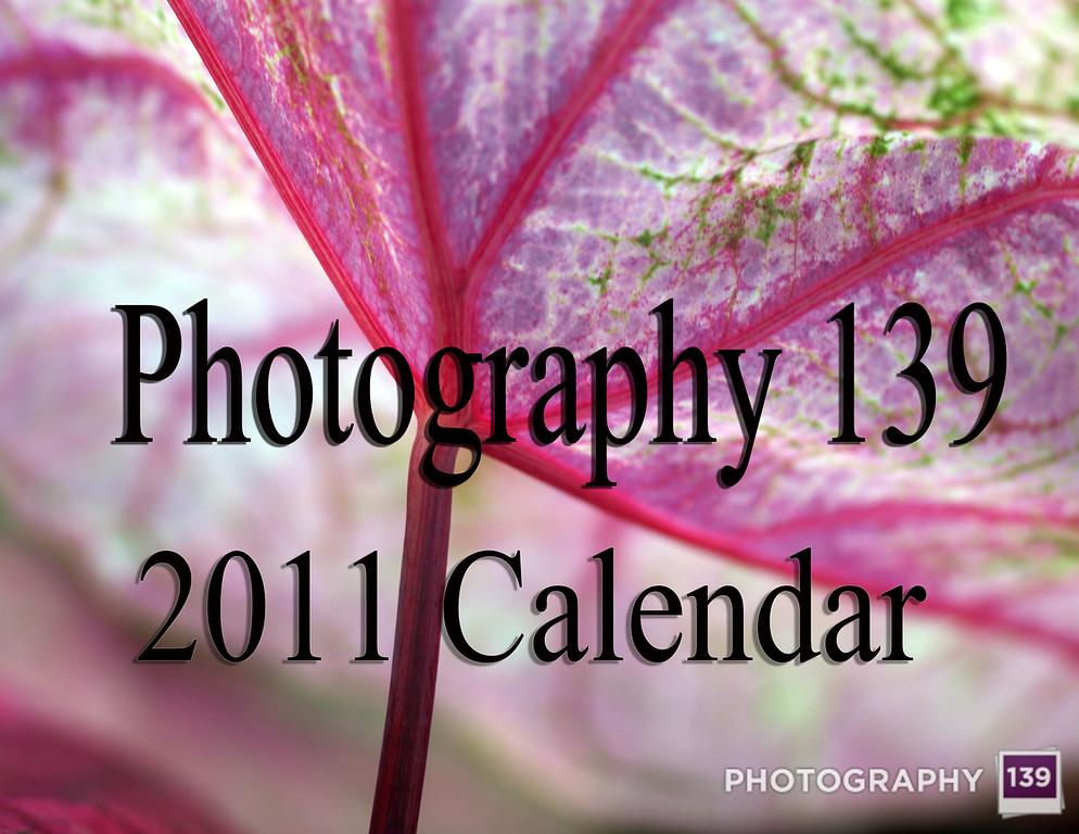 2011 Calendar - Front Cover